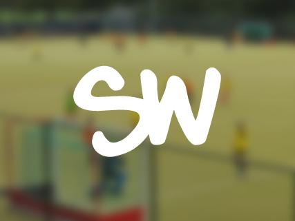 Stickwise Hockey Camps
